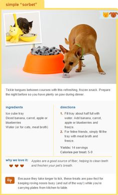 Tickle tongues between courses with this refreshing, frozen snack! Prepare this Thanksgiving treat the night before so you have plenty on paw during dinner.