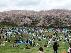 http://cbr1100.blog.so-net.ne.jp/2010-04-04