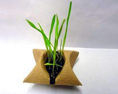 seed packaging planter by Germoir