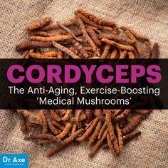 Cordyceps - Dr. Axe