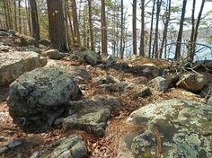 Lichen-covered boulders on the Caddo Bend Trail