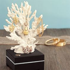 For a seaworthy jewelry stand, coat a small wooden box with ebony stain. (You can also use a plain block of wood — just be sure to sand the edges!) Then, use your hot-glue gun to attach the bottom of a small branch of coral to the wood. Hold it tightly in place for a minute or two, then let it dry completely. Cut a length of silver trim to fit around the middle of the box; attach it using a few small daubs of glue. Finally, select a few smaller shells; after arranging them around the base of…