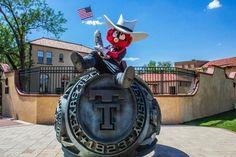Raider Red. Mascot of the Year 2012. Texas Tech University.