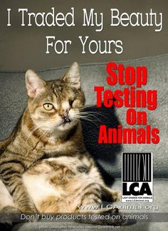 "You've heard the term, ""beauty is pain."" It is. The price of your fake beauty comes at the cost of THOUSANDS of animals lives. You better think again about the product you use before you buy them. Let's boycott animal testing."