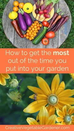 Five ideas to help you deepen the joy and satisfaction you get from the time you invest in your organic vegetable garden.