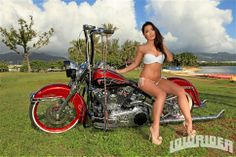 2007 Harley Davidson Heritage Model Steph Ly