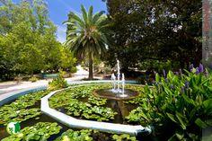 jardin botanico buenos aires - Buscar con Google