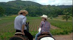 Dennis Quaid and Lindsay Lohan The Parent Trap vineyard