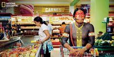 Hoy os hablaré de los Kayapó. Un pueblo que tomo como ejemplo de lo que se puede hacer con los indígenas que quieren mantener su independencia, sin renunciar a poder servirse de los bienes que le ofrece la sociedad de su entorno....