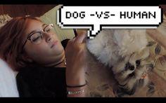 Dog -vs- Human | Short film