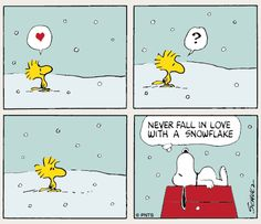 gotta love woodstock and snoopy! Peanuts Cartoon, Peanuts Snoopy, Peanuts Comics, Snoopy Cartoon, Snoopy Comics, Fun Comics, Snoopy Love, Snoopy And Woodstock, Peanuts By Schulz