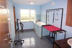 -repinned- dog grooming room