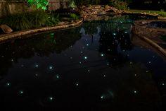 Celestial Fiber Optic Swimming Pool Lights