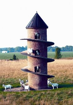 'Goat Tower' - Wolf Creek State Park on Lake Shelbyville in Illinois. Dave Johnson built this tower for his Saanen goats. It gives the goats shade as well as a place to climb that they would normally get in their native Switzerland. Wolf Creek, Farm Animals, Funny Animals, Cute Animals, Nature Animals, Wild Animals, Tier Fotos, Alpacas, Farm Life