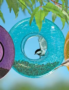 Our Blue Moon Birdfeeder brightens up the landscape while providing food--and shelter from the rain--for birds. $24.95