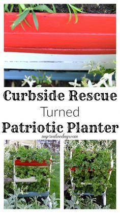 Curbside Rescue Turned Patriotic Planter