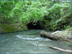 Explore more rivers... we did this Etowah River twice and going through that tunnel was definitely an adventure!