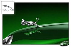 Baby Jaguar Hood Ornament ... is this real or a joke ??