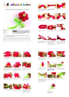 PDF Guide:  Balloon Twisting From Scratch 14 - The Flower