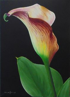 How to paint a Calla Lily Part 1