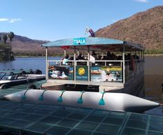 Sun City Waterworld | Boat Trips | Cruises - Dirty Boots Open Water Swimming, Swimming Pools, North West Province, Mountain Bike Races, Evening Sunset, Sun City, Cruises, Trips, Boat