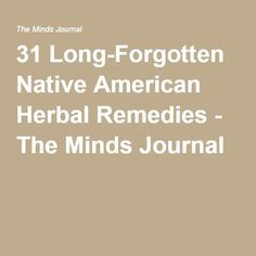 31 Long-Forgotten Native American Herbal Remedies - The Minds Journal