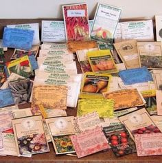 GMO Free Seed Sources, How to Store Seeds and Germination Rates After Storage