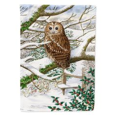 Caroline's Treasures Tawny Owl Flag Canvas House Size at Lowe's. Heavy Duty Polyester House Size Flag that measures approximately 28 x 40 inches. This is a sleeve pole flag that will fit a standard decorative flag pole. Strix Aluco, Wooden Flag Pole, Garden Owl, Tawny Owl, Glass Cutting Board, Cutting Boards, Horned Owl, Thing 1, Flag Stand