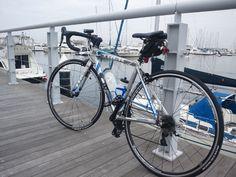 Bayside marina at Yokohama