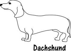 Image Result For Coloring Pages With Dachshund