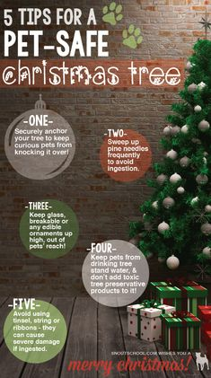 Keep your Christmas tree safe for pets with these 5 pet Christmas ideas from SNOUT School. Good for any vet tech or veterinarian to share with pet parents! More social media tips for veterinary hospitals at www.snoutschool.com