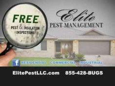 Pest Control Parkersburg | Elite Pest Management - YouTube