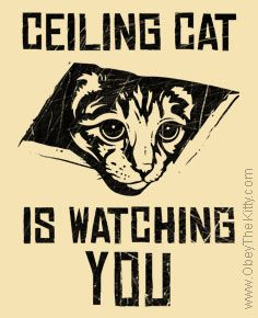 Ceiling Cat is Watching YOU : Obey the pure breed! The Dog Revolution