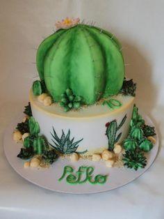 Cactus cake - Cake by Veronika