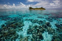 Coral Reefs of South Water Caye, Belize - The shallow water patch coral reefs to the south of what has been described as one of the 10 secret beaches of the world by Travel