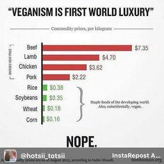 reason to be #vegan