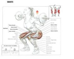 Anatomy of Working Muscles - Squats Killer Workouts, Toning Workouts, Fun Workouts, Training Legs, Weight Training, Fitness Tips, Health Fitness, Squats Fitness, Fitness Quotes