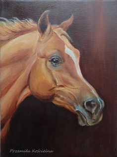 ****************** ORIGINAL EQUESTRIAN ART With LOVE *******************  Equestrian Painting and drawing is my passion and horses is my passion too. In my artworks I want to convey my love. I offer the originals because associating with original art has a very special, personal message.  ORIGINAL OIL PAINTING  Horse portrait Arabian horse Oil painting on canvas Size: 18 x 24 cm = 9,4 x 7 inch Signed : P. Pizl (me) Condition: Excellent  I use high-quality materials, which guarantee long-...