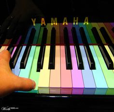 Colorful Keys - Worth1000 Contests