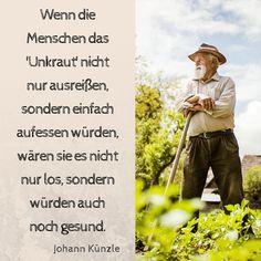 Wenn die Menschen das 'Unkraut' nicht nur ausreißen, sondern einfach aufessen würden, wären sie es nicht nur los, sondern würden auch noch gesund. - Johann Künzle  #zitate #künzle #unkraut