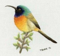 Bird embroidery, author: Trish Burr