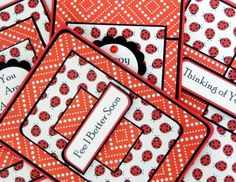 Ladybugs: Blank Notecard Set of 4 Different Cards by TheMaddArtist