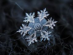 Russian photographer Alexey Kljatov tapes a $50 lens to his cameras and takes the most stunning macro snowflakes photos