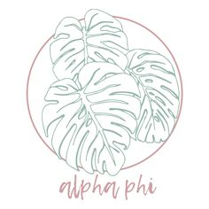 Alpha Phi Palm Leaf Design by College Hill Custom Threads Sorority and Fraternity Greek Apparel and Sorority Shirt Designs, Sorority Shirts, Tee Shirts, Sorority Outfits, Sorority Life, Alpha Phi Crafts, Broken Spirit, Bid Day Themes, Custom Greek Apparel