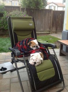 "❤ No reason to let winter's cold prevent a little outside snooze time. Every body is comfy and warm - while getting that important ""fresh air"" ❤ Posted from I Love English Bulldogs"