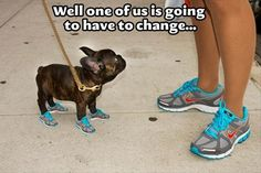 evidently there is a store somewhere that sells matching running shoes for your dog