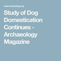 Study of Dog Domestication Continues - Archaeology Magazine