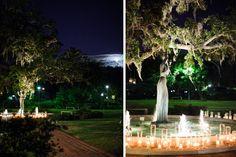 Logan & Robert Tied the Knot! Tying the Knot Wedding Coordination and Greer G Photography! See the full wedding here: www.tyingtheknotweddingcoordination.com/blog/seniors-say-i-do #neworleanswedding #cityparkwedding #pavilionoftwosisters