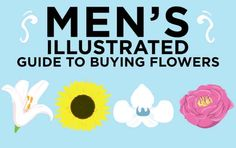 Men's Illustrated Guide To Buying Flowers (this is great!  So funny!)