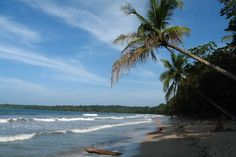 Costa Rica: Cahuita Beach - Natural World Safaris